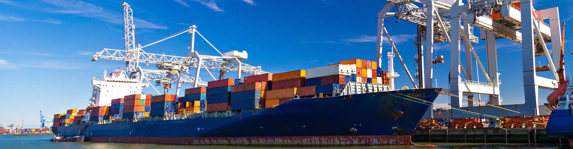 Solutions providers in foreign trade business